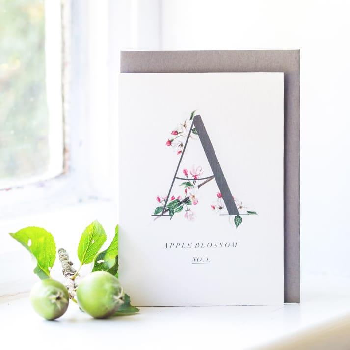 apple blossom greetings card