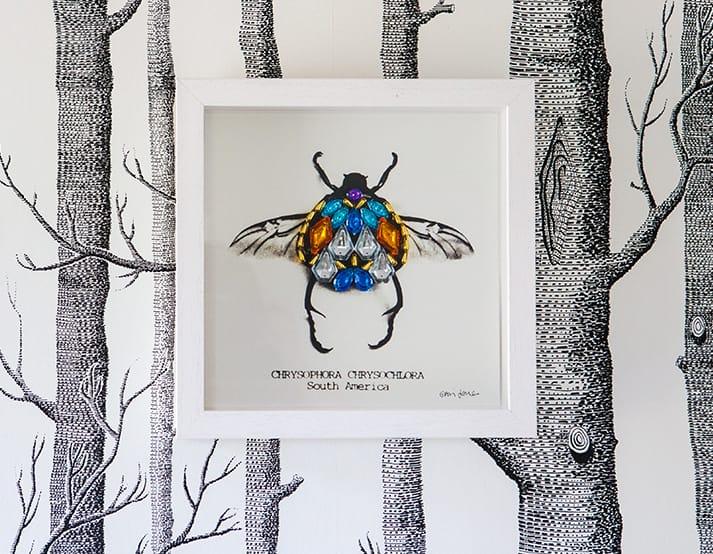 stylist live beetle