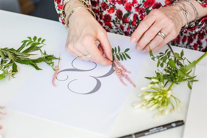 bespoke illustrations ampersand