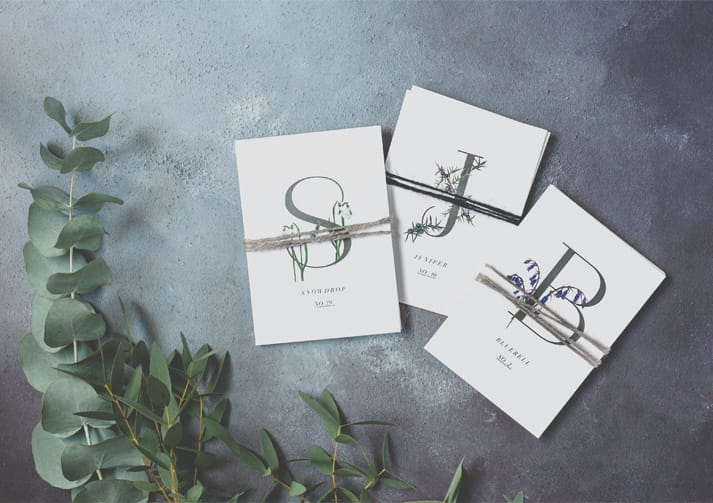 botanical alphabet card collections