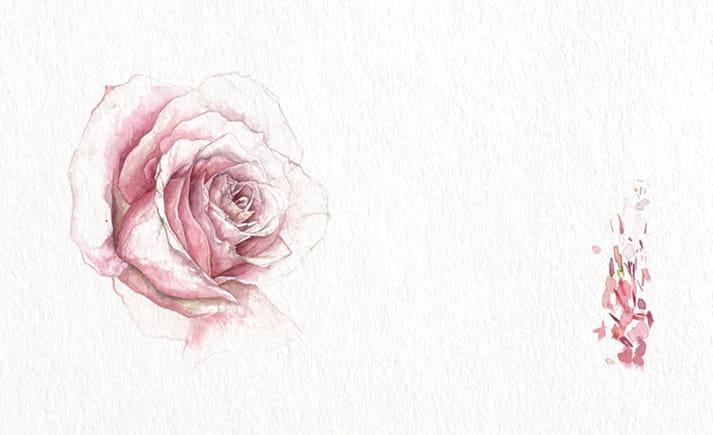 winter wedding amnesia rose