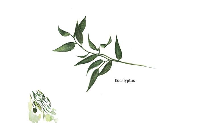 winter wedding eucalyptus