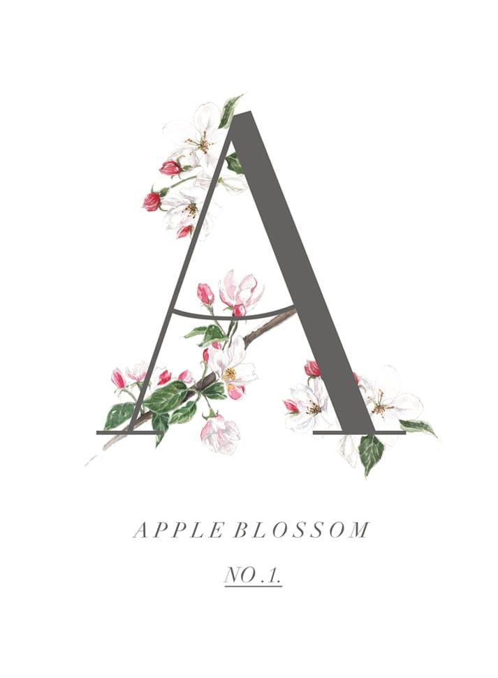 apple blossom original
