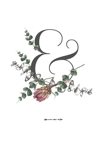 ampersand illustration